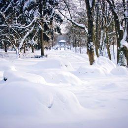 александрия зима1